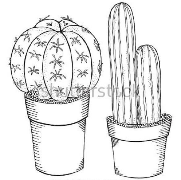Мультяшные кактусы
