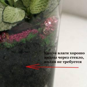Цветы в стеклянном шаре