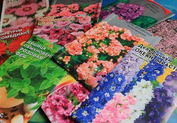 Семена домашних цветов
