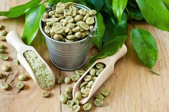 Растение кофе в домашних условиях