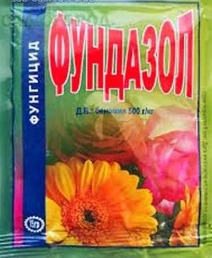 Как избавиться от мучнистой росы на цветах