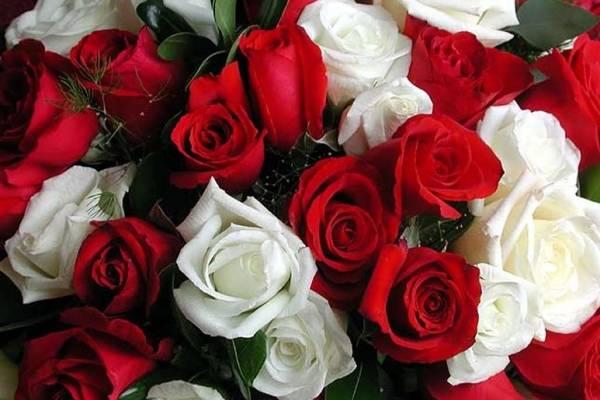 Букет цветов белые розы