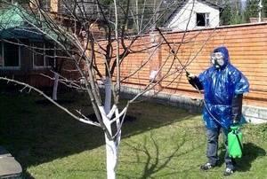 Циркон стимулятор роста растений применение