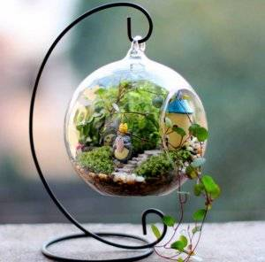Сад в стекле