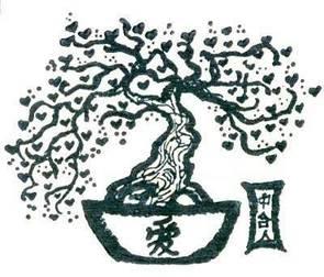 Дерево жизни комнатное растение