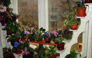 Деревянное кашпо для цветов своими руками