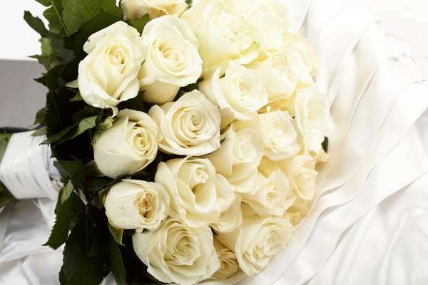 Что значит белая роза