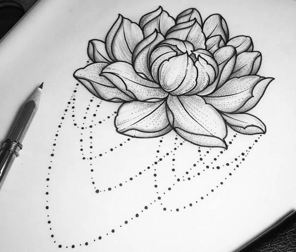 Значение цветка лотос
