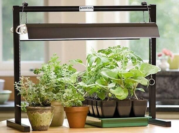 Лампа дневного света для растений