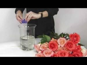 Как сохранить розы в вазе с водой