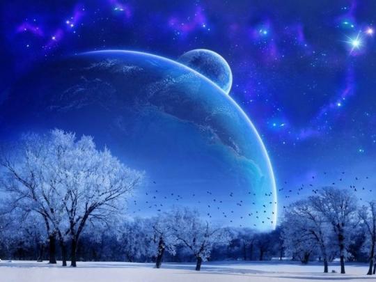 Лунный календарь фиалок