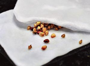 Условия для успешного выращивания роз из Китая